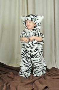 56 Biely tiger