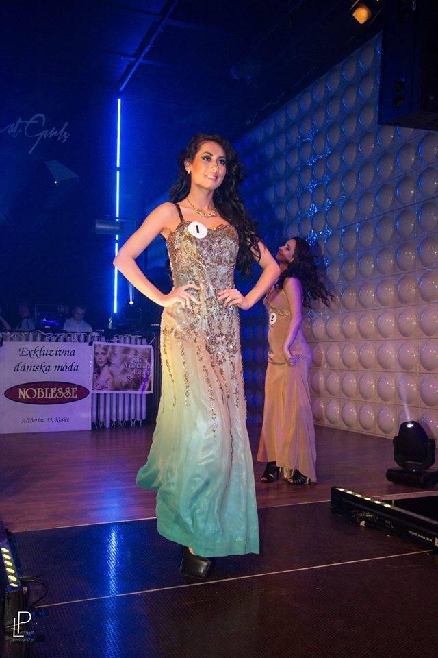 http://www.tinakreativ.sk/wp-content/uploads/2015/12/Dlhé-vyšívané-šaty.jpg
